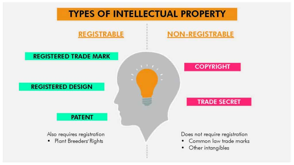 diagram of registrable vs non-registrable IP rights